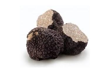 Bourgogne truffles