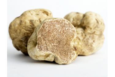 Truffles Magnatum Pico