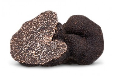 Truffles menalosporum Category 2