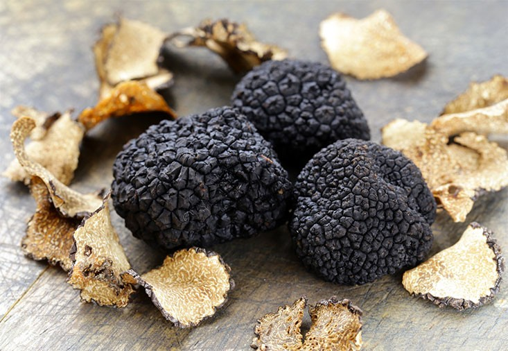 Discover the truffle